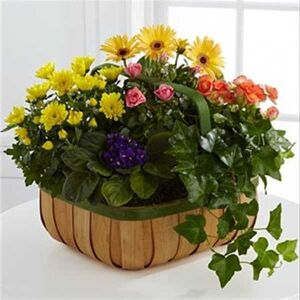 Gentle Blossoms Basket